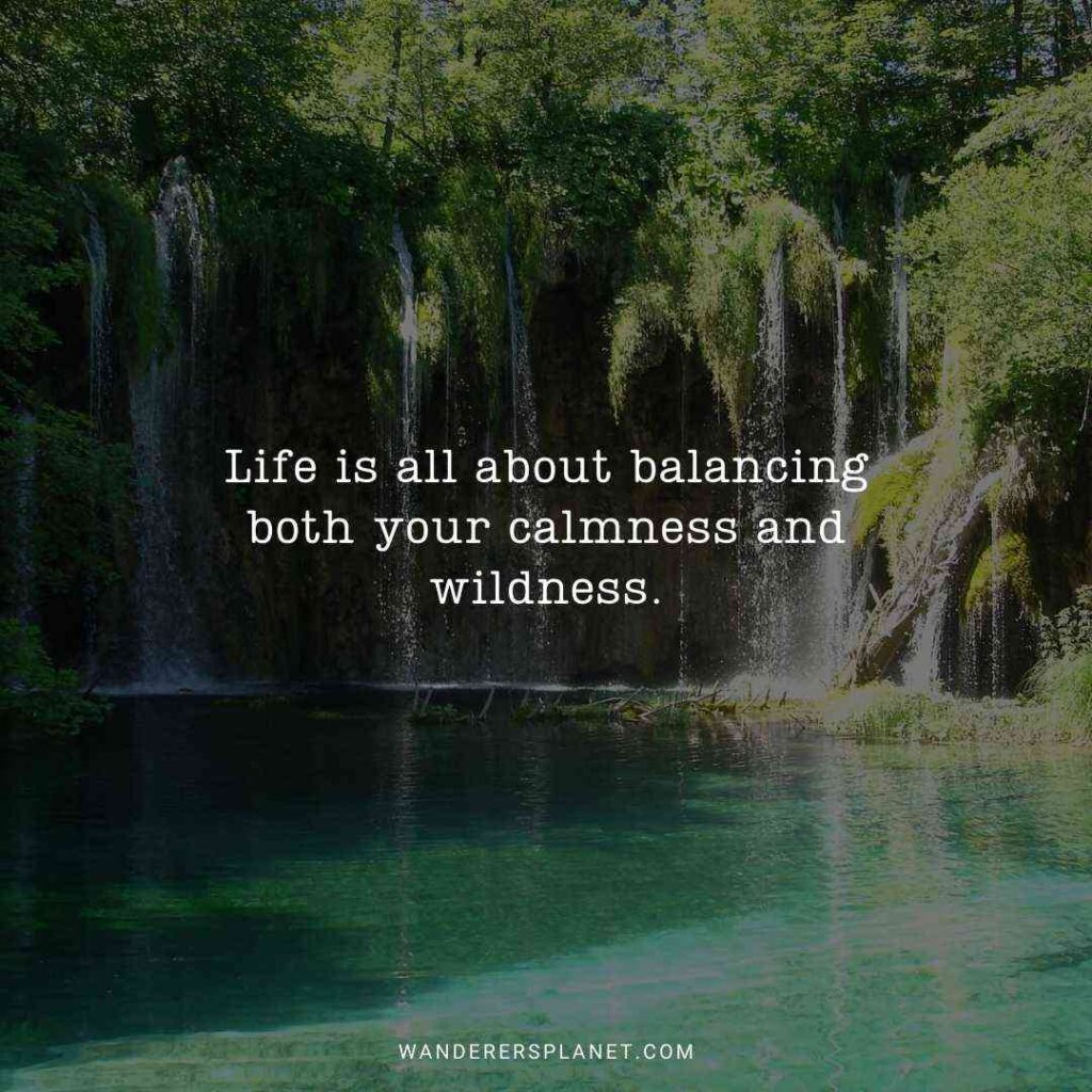 quotes-about-waterfalls-and-life