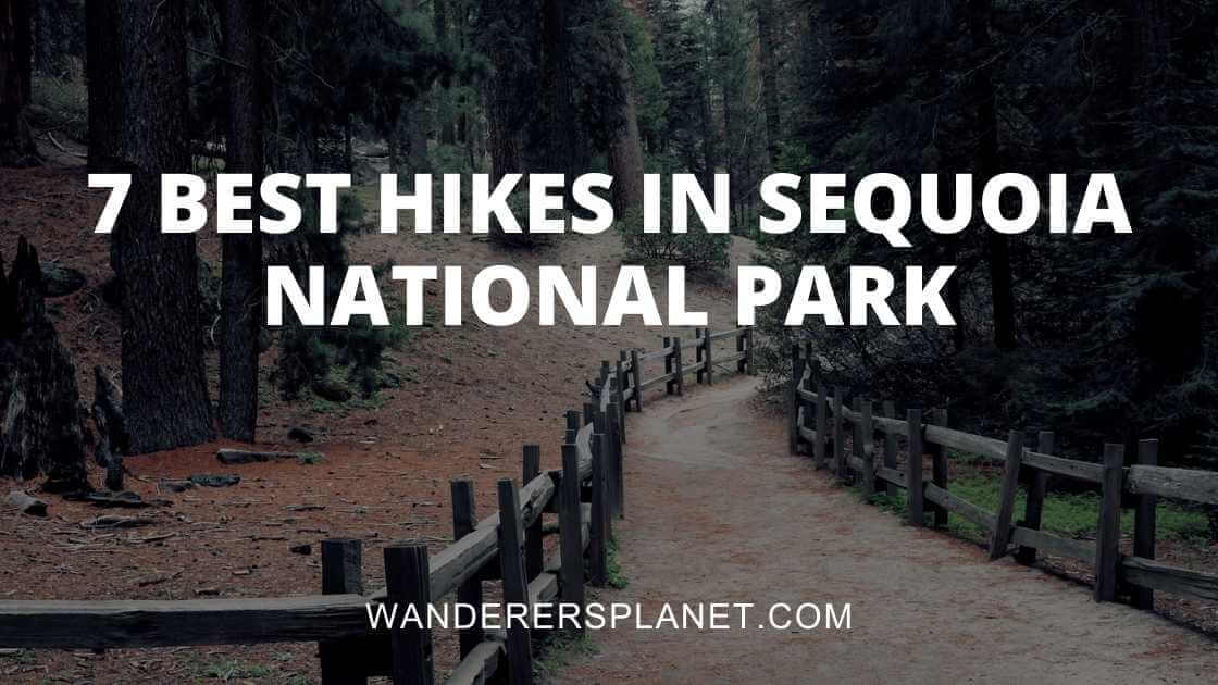best hikes in sequoia national park